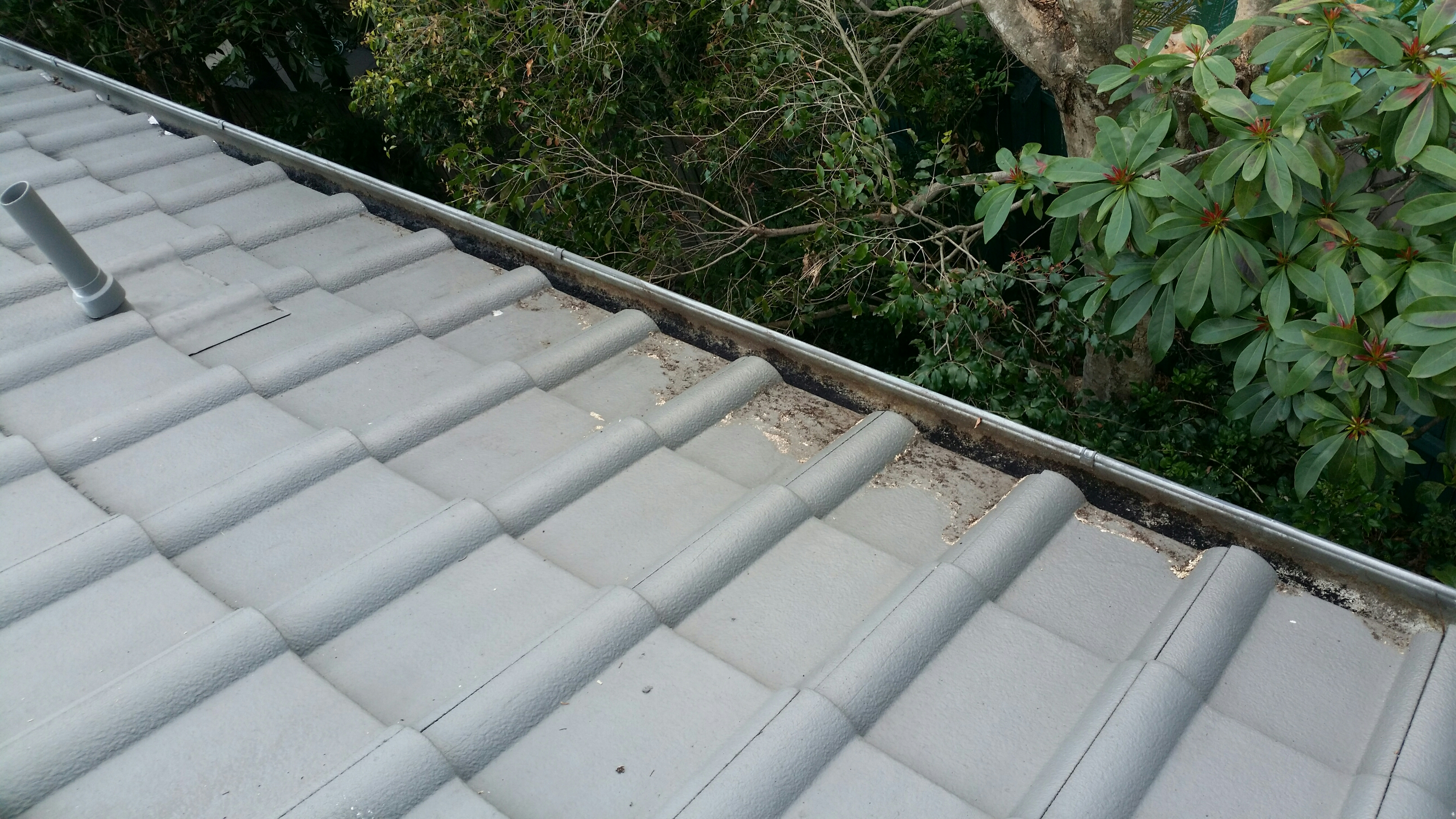 After ICU Gutter Cleaning in Kenmore Hills - 1