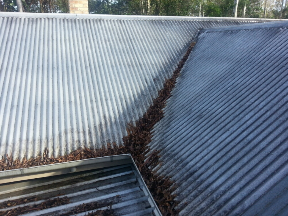 ICU Cleaning - Before Roof & Gutter Cleaning in Pullevale!