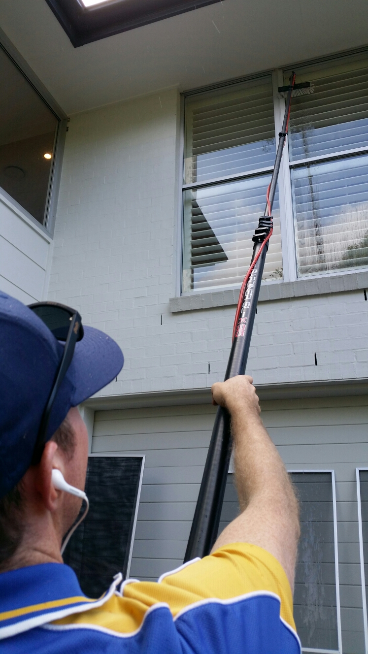 Window Cleaning with Water Fed in Fig Tree Pocket!