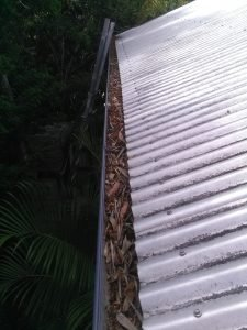 Gutter After Cleaning in Paddington