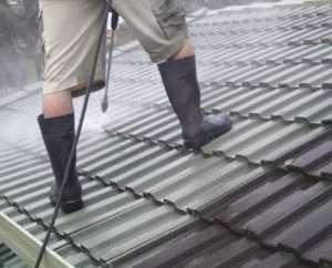 ICU Roof Cleaning Taringa