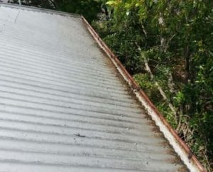 ICU Gutter Cleaning Milton